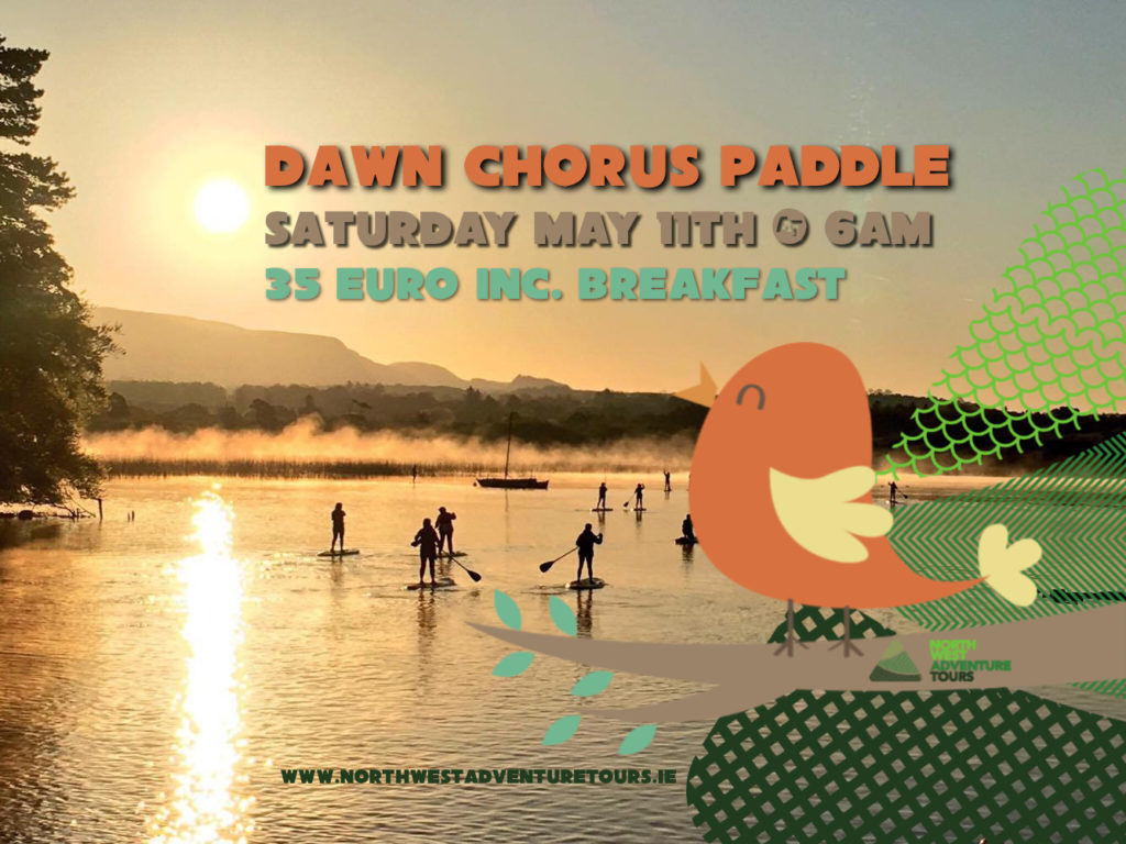 dawn-chorus-sup